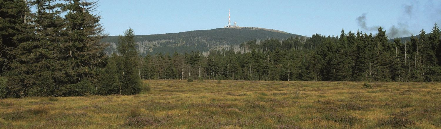The mountain Brocken in the Harz
